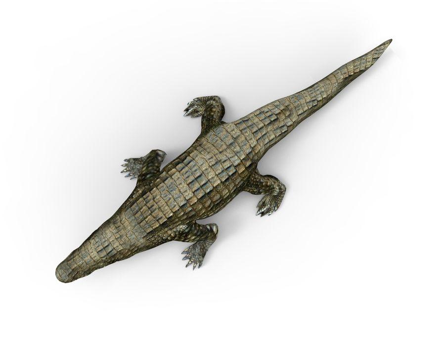 krokodil låg poly spel redo royalty-free 3d model - Preview no. 7