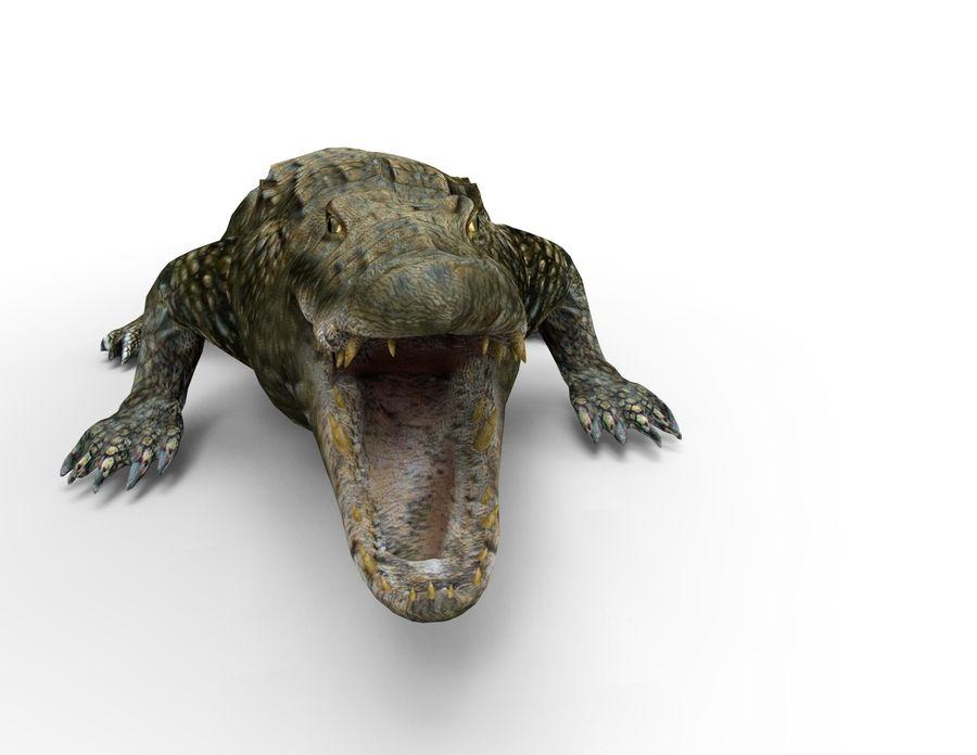 krokodil låg poly spel redo royalty-free 3d model - Preview no. 2
