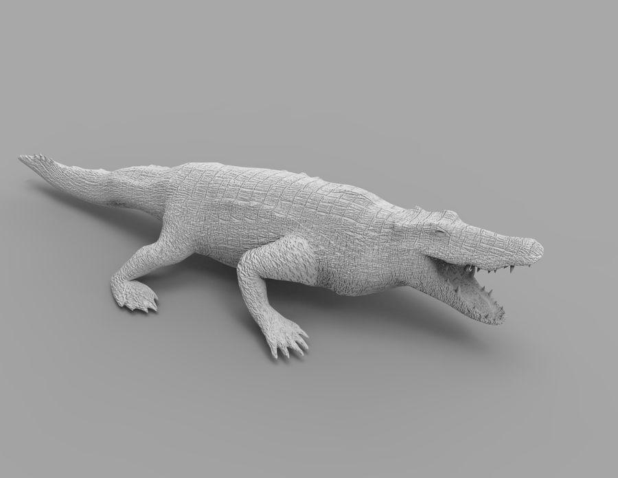 krokodil låg poly spel redo royalty-free 3d model - Preview no. 35