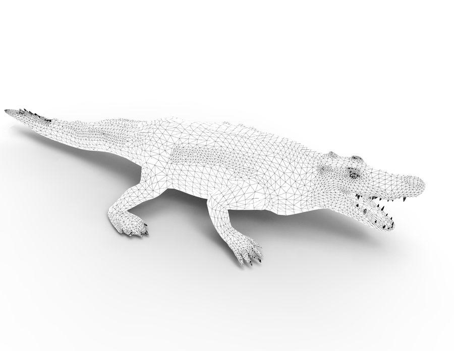 krokodil låg poly spel redo royalty-free 3d model - Preview no. 41
