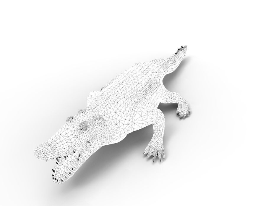 krokodil låg poly spel redo royalty-free 3d model - Preview no. 40