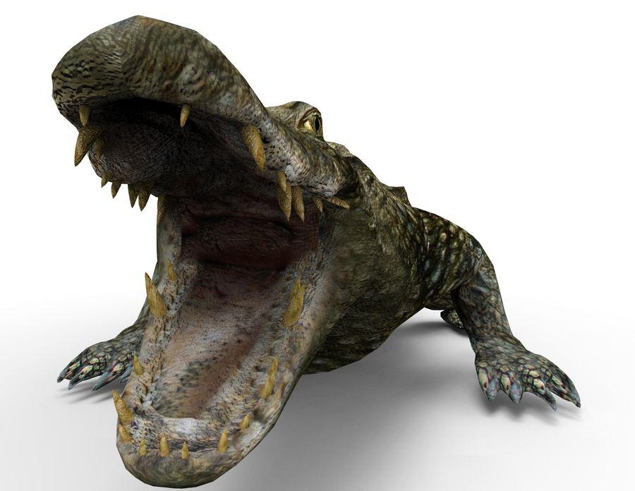 krokodil låg poly spel redo royalty-free 3d model - Preview no. 12