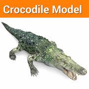 crocodile model low poly game ready 3d model