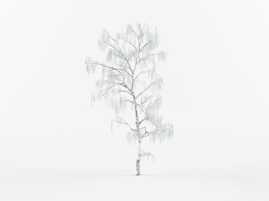 Collection of winter trees royalty-free 3d model - Preview no. 4