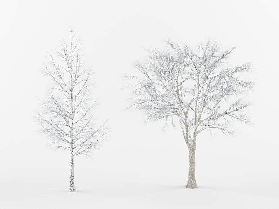 Collection of winter trees royalty-free 3d model - Preview no. 3
