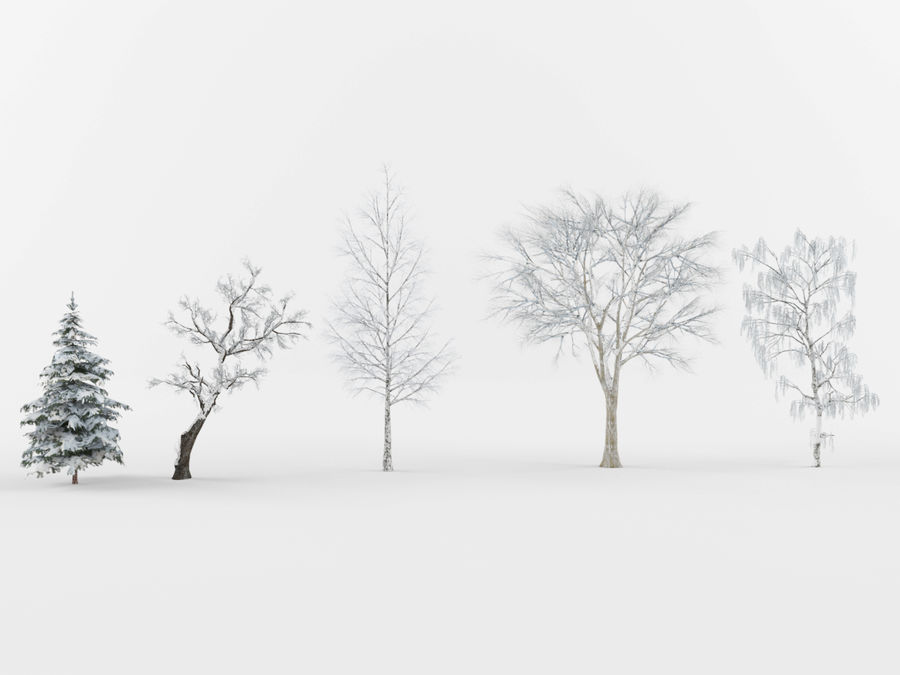 Collection of winter trees royalty-free 3d model - Preview no. 1