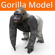 gorilla model 3d model