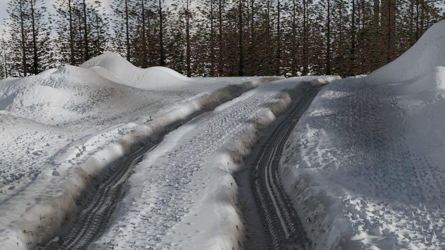Snow landscape royalty-free 3d model - Preview no. 1