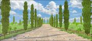 Cipres Path Landscape 3d model