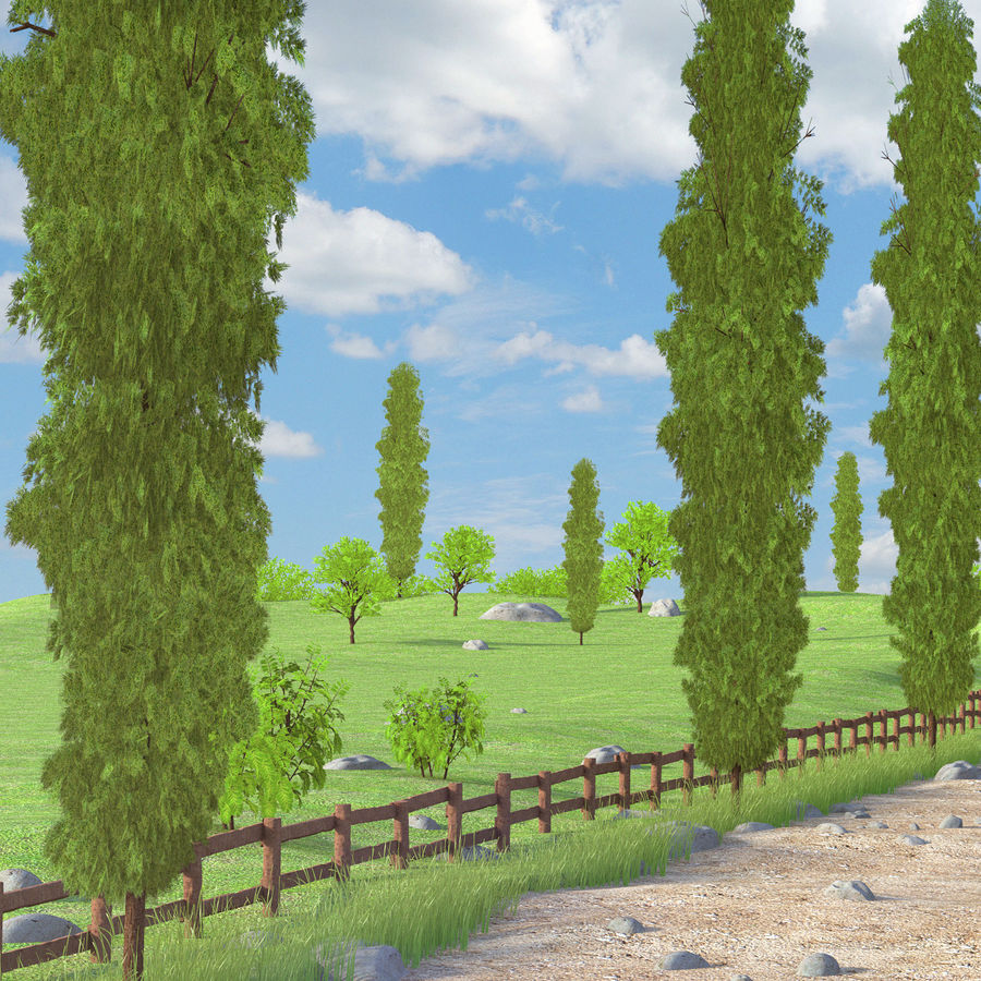 Cipres Path Landscape royalty-free 3d model - Preview no. 3