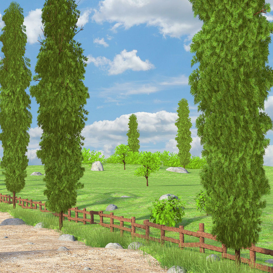 Cipres Path Landscape royalty-free 3d model - Preview no. 4