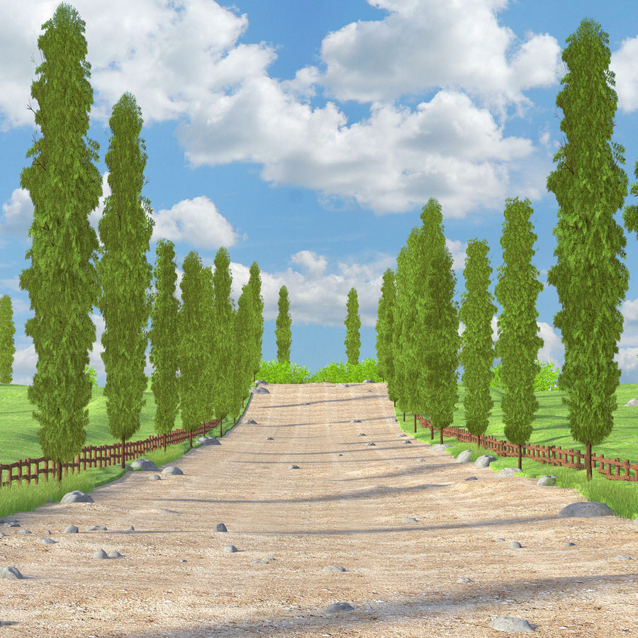 Cipres Path Landscape royalty-free 3d model - Preview no. 2