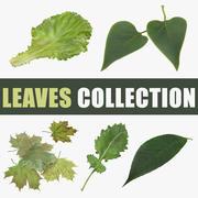 葉のコレクション 3d model