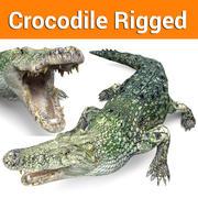 crocodile rigged game ready 3d model
