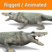 krokodil Getuigd, geanimeerd spel klaar 3d model