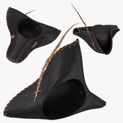 Пиратская шляпа 02 Коллекция 3d model