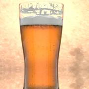 Bicchiere di birra 3d model