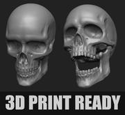 Gelede menselijke schedel voor 3D-printen 3d model