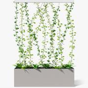 partition plant 3d model