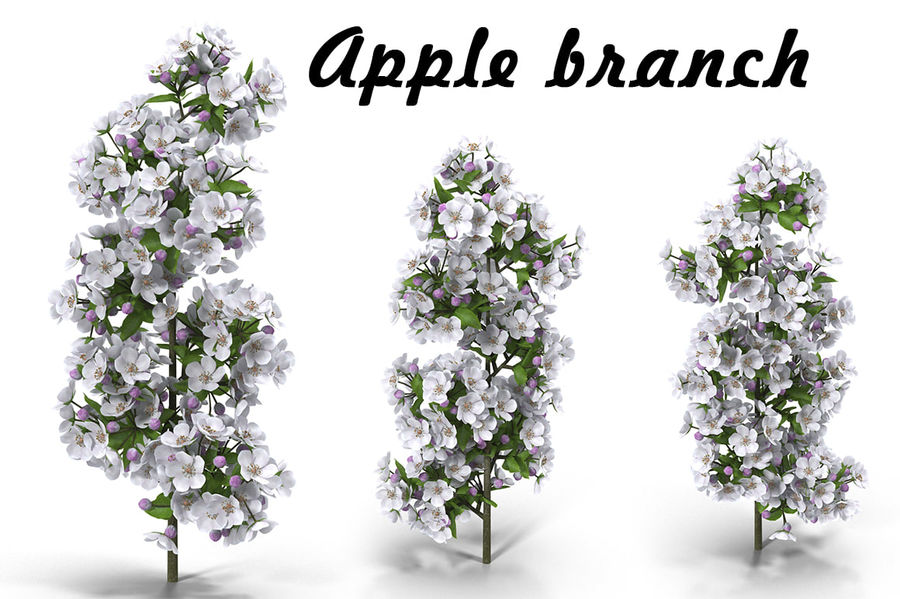 Apple branch royalty-free 3d model - Preview no. 1