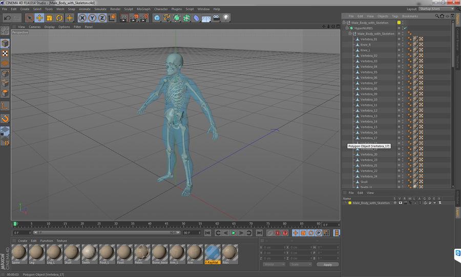 Męskie ciało ze szkieletem royalty-free 3d model - Preview no. 18