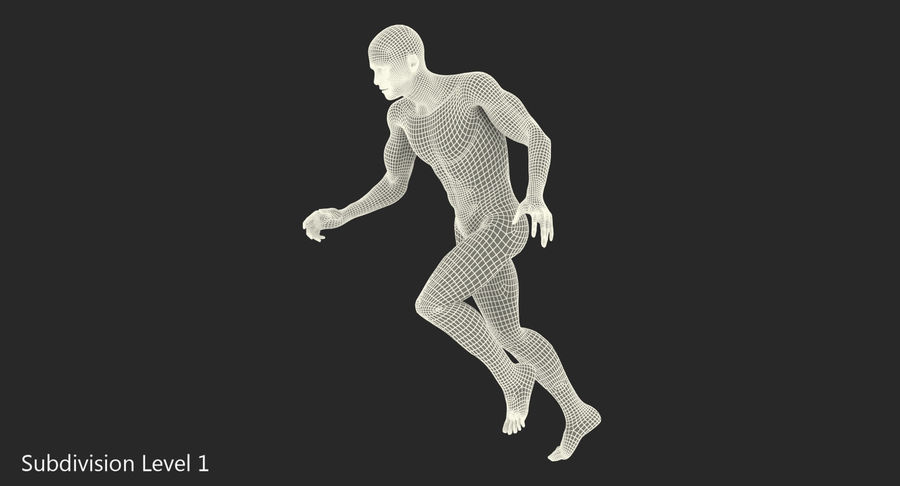 Running Man Muscles Anatomy System royalty-free 3d model - Preview no. 12