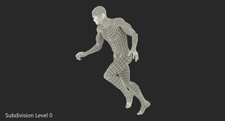 Running Man Muscles Anatomy System royalty-free 3d model - Preview no. 11