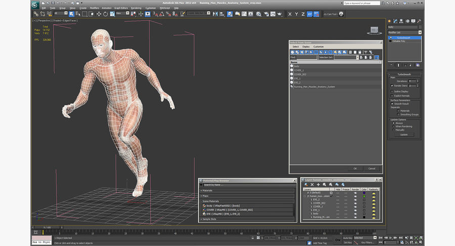 Running Man Muscles Anatomy System royalty-free 3d model - Preview no. 15