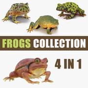 Frogs 3D模型集合3 3d model