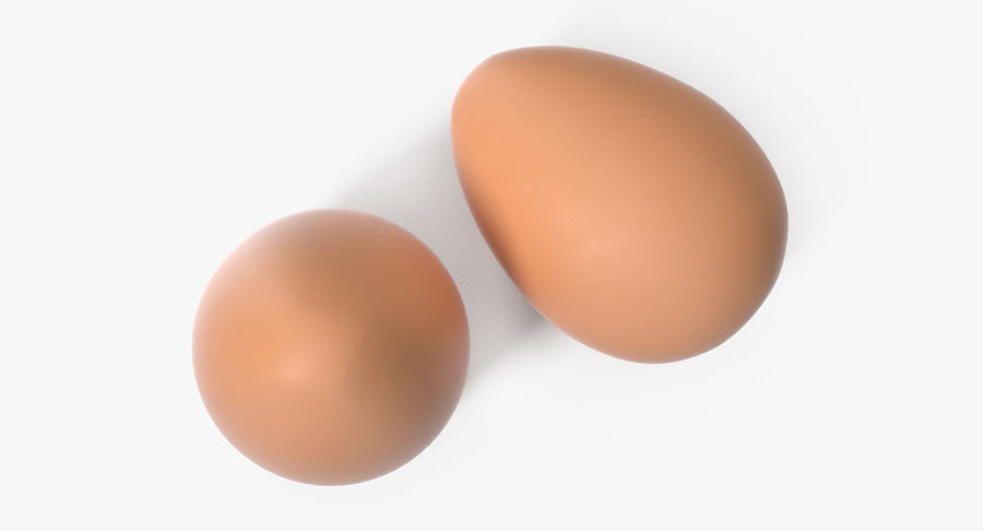 Brown Chicken Egg royalty-free 3d model - Preview no. 4