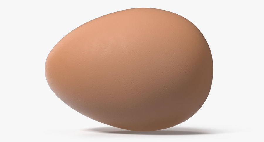 Brown Chicken Egg royalty-free 3d model - Preview no. 5