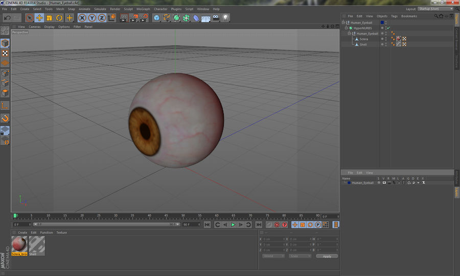 Human Eyeball royalty-free 3d model - Preview no. 14