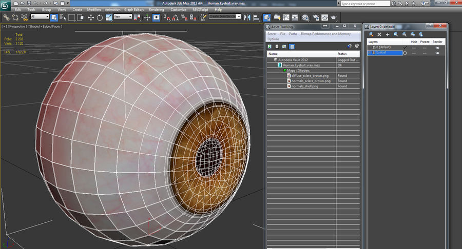 Human Eyeball royalty-free 3d model - Preview no. 12