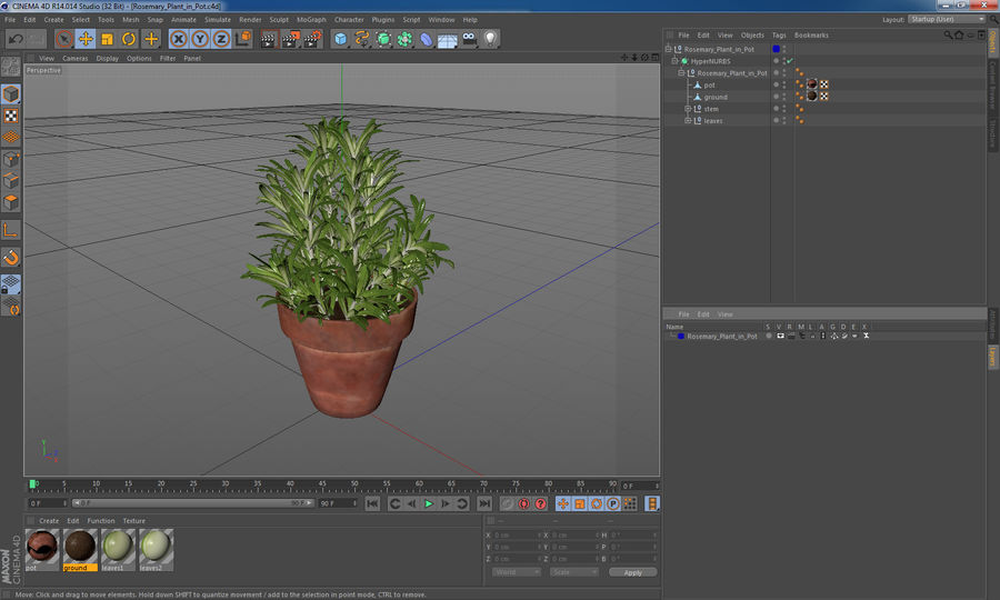 Rosemary Plant in Pot royalty-free 3d model - Preview no. 16