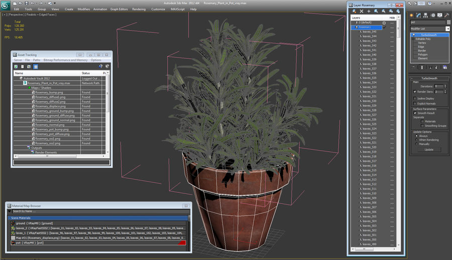 Rosemary Plant in Pot royalty-free 3d model - Preview no. 18