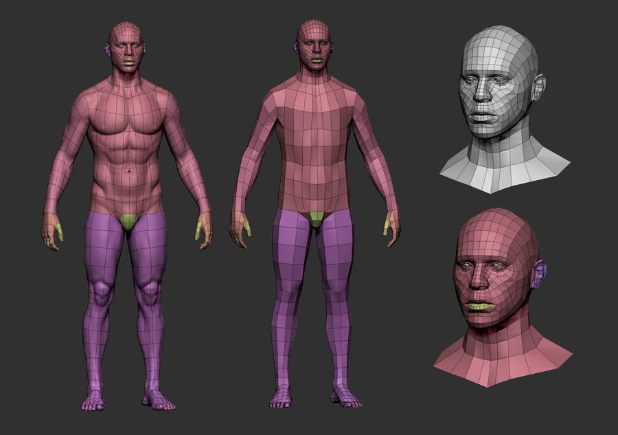 man body royalty-free 3d model - Preview no. 5