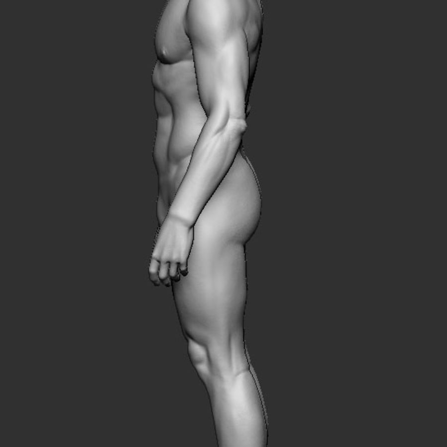 man body royalty-free 3d model - Preview no. 3