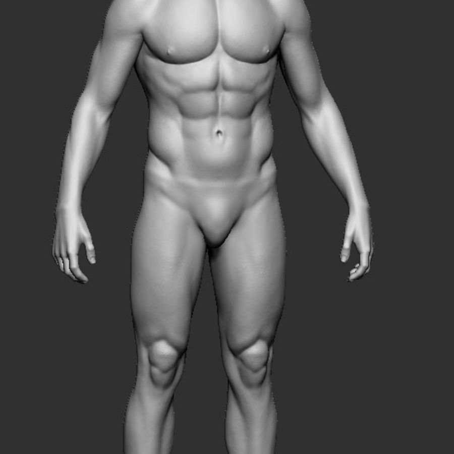 man body royalty-free 3d model - Preview no. 1