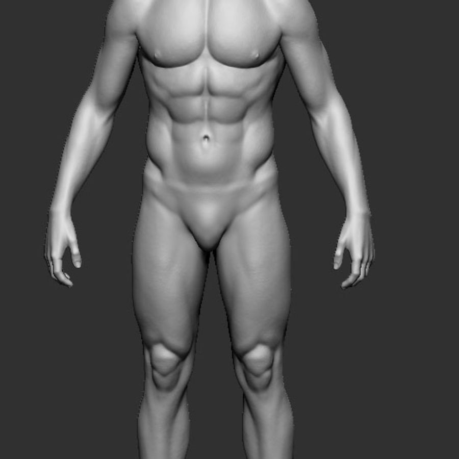 man body royalty-free 3d model - Preview no. 2