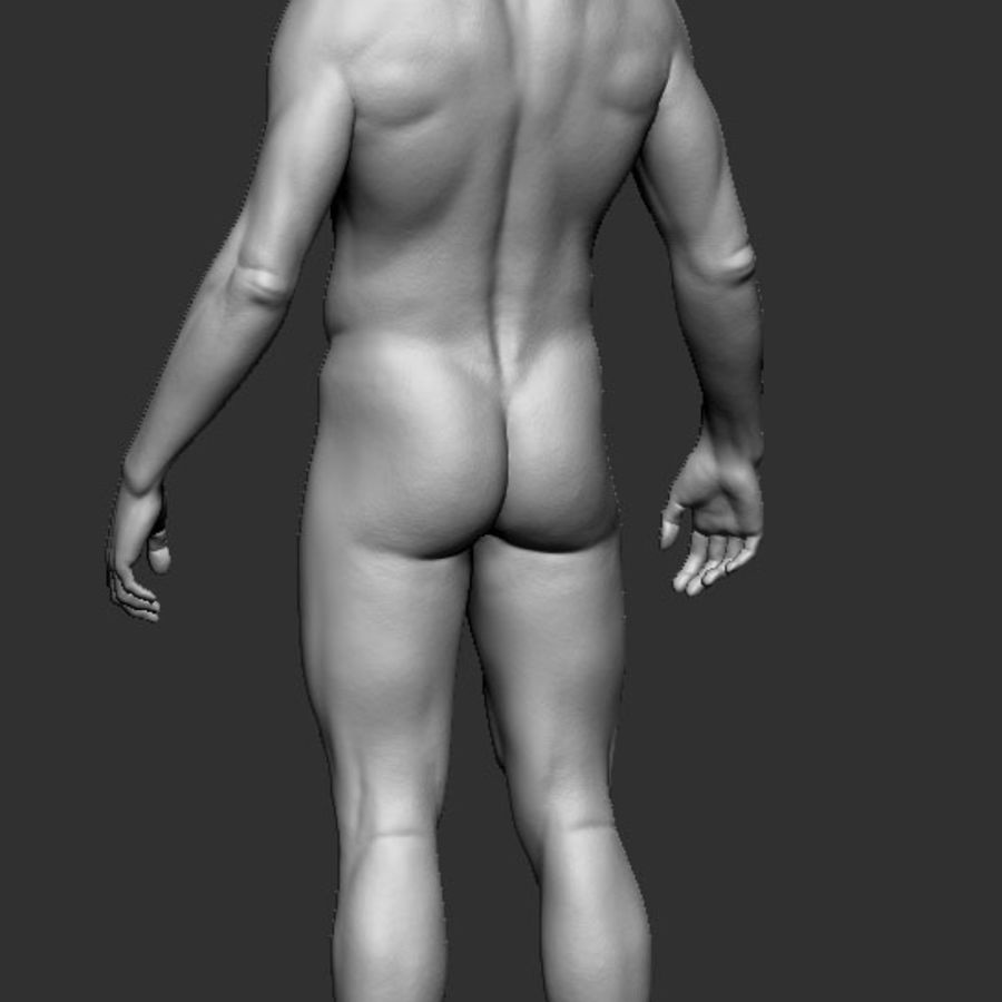 man body royalty-free 3d model - Preview no. 4