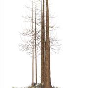 Kış Ağacı V1 3d model
