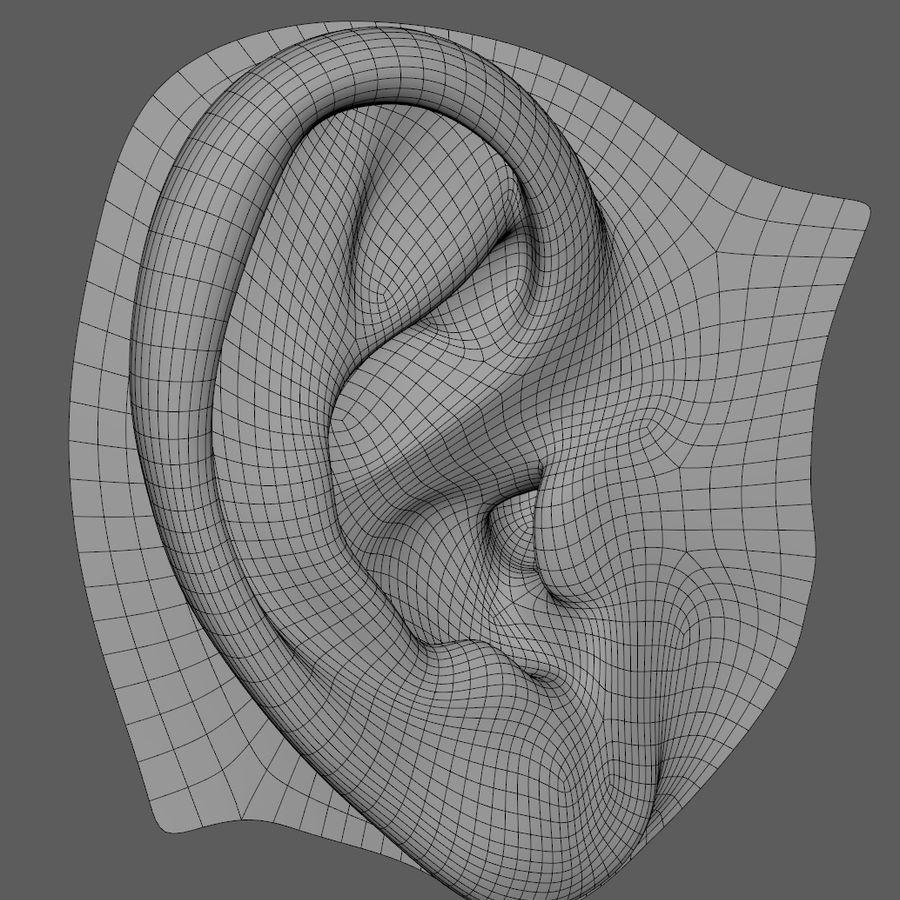 Ludzkie ucho Gotowy do wydruku. royalty-free 3d model - Preview no. 2
