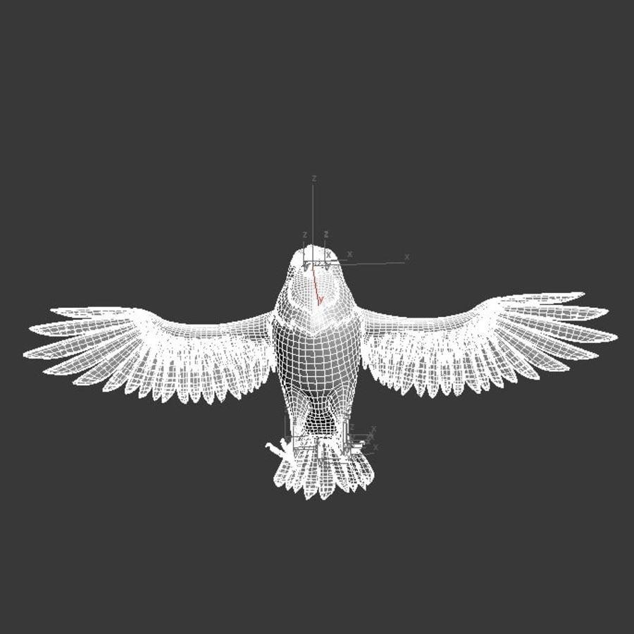 Orzeł royalty-free 3d model - Preview no. 12