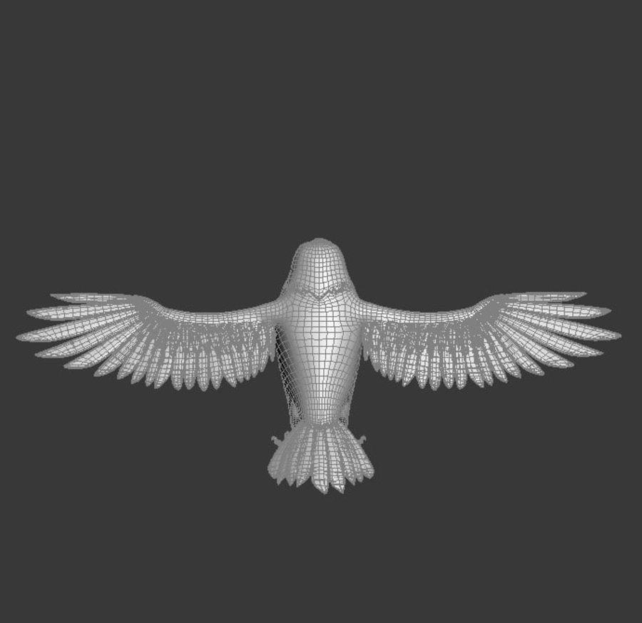 Orzeł royalty-free 3d model - Preview no. 13