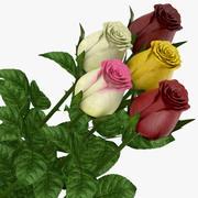 Rose stängd 3d model