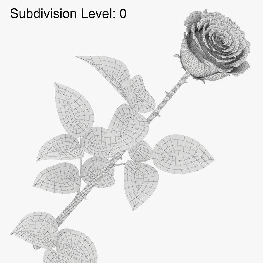 ローズミドルオープン royalty-free 3d model - Preview no. 11