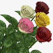 Rose milieu ouvert 3d model