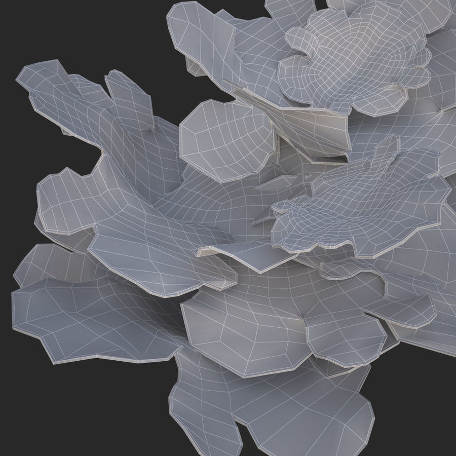 coral montipora_bush royalty-free 3d model - Preview no. 16