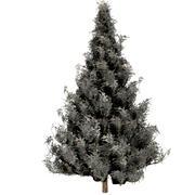 トウヒの木の雪 3d model