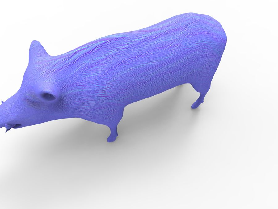 Cinghiale royalty-free 3d model - Preview no. 18